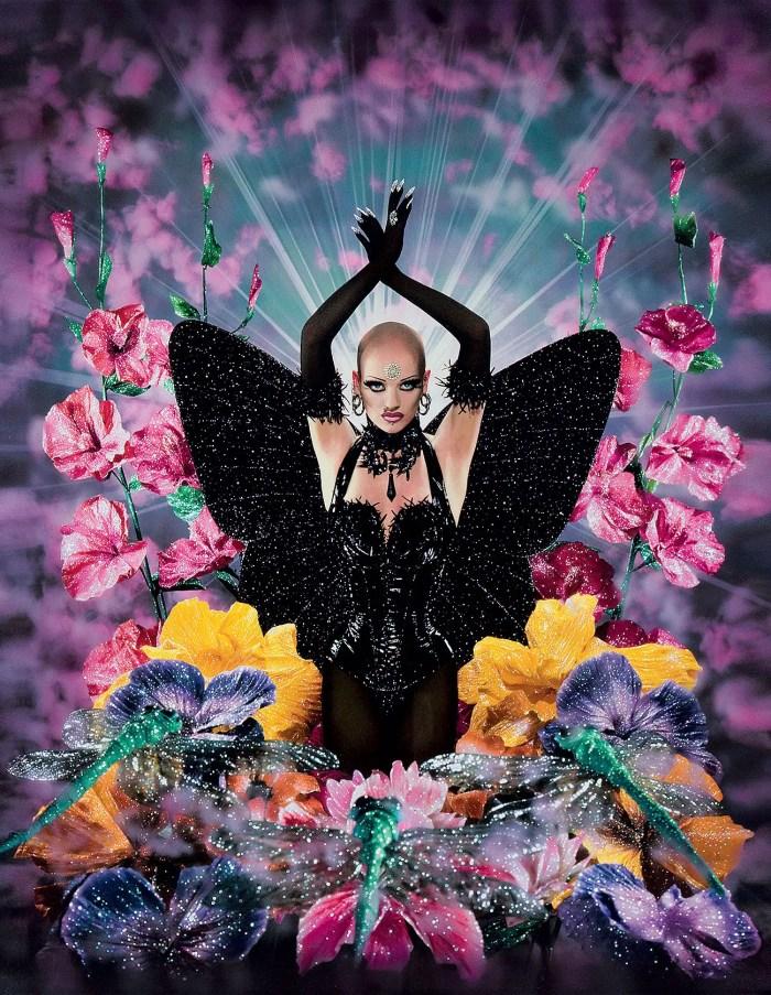 Le Papillon noir (Polly Fey)