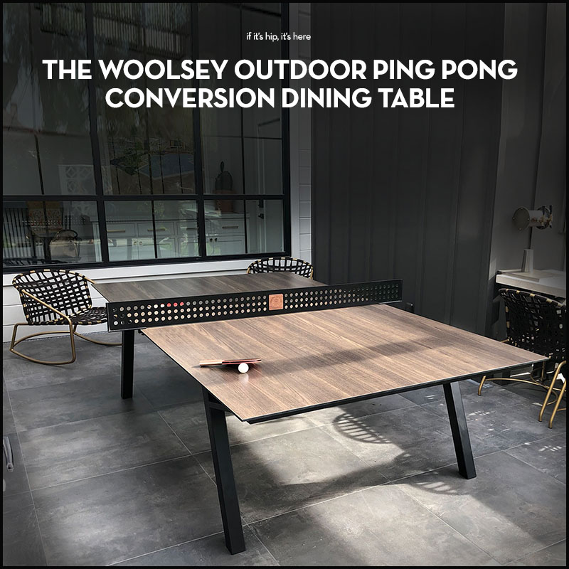 Woolsey Outdoor Ping Pong Dining Table