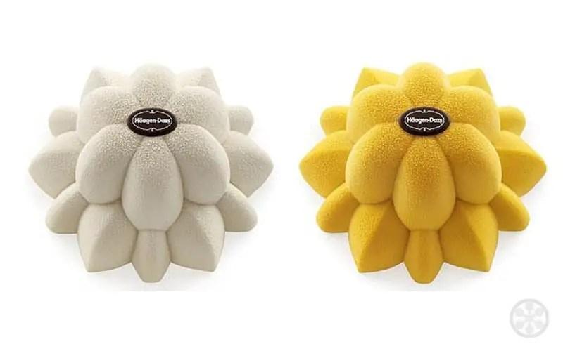Kiki-van-Eijk-flowers-Häagen-Dazs-cakes-2011