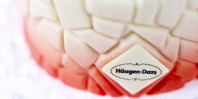 haagen-dazs-holiday-cake-detail