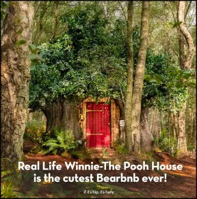 Tut tut! Someone Got To Stay At Pooh's House and It Wasn't Me!