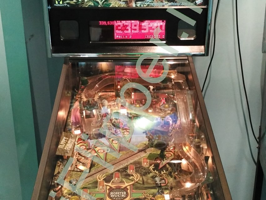 Pinball Big Buck Hunter