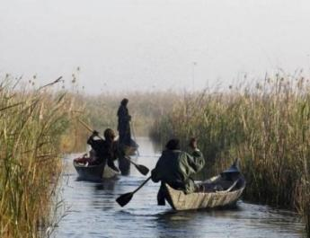 ifmat - Environmentalists blame Chinese companies for draining Iran marshes