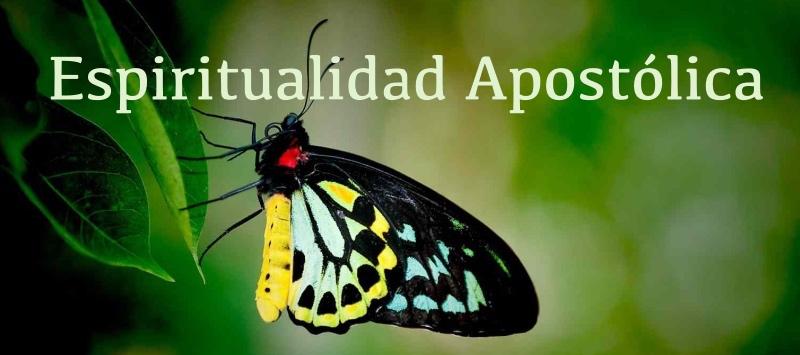 DTN005 Introducción a la Espiritualidad Apostólica | Lección 3 Parte 1