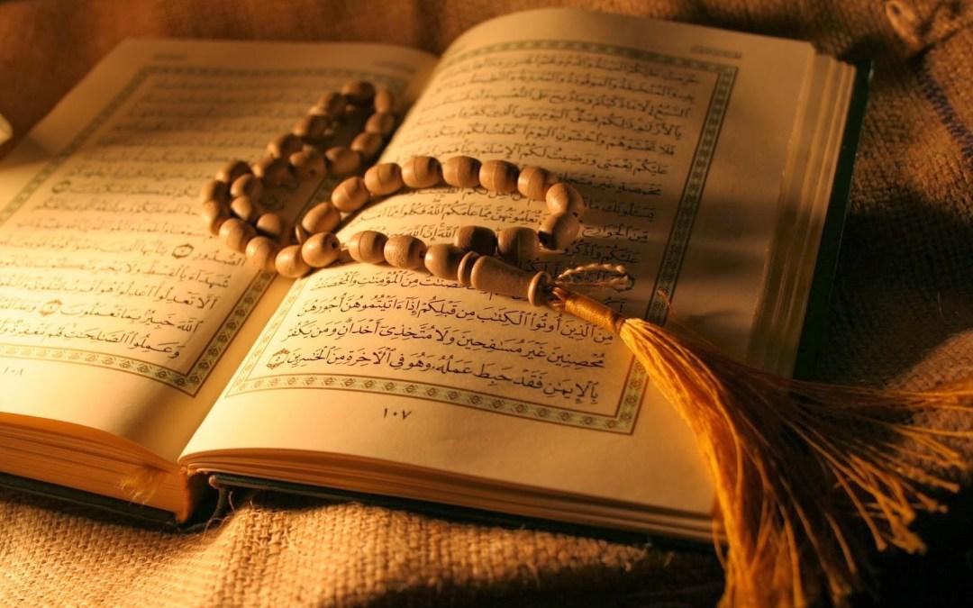 164 Versículo de Yihad en el Qur´an   | Answering Islam