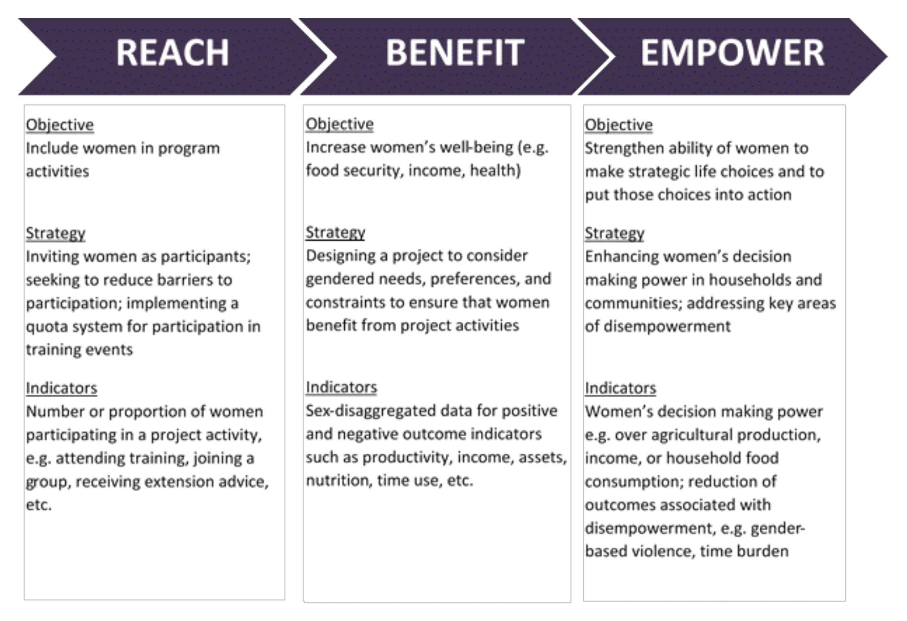 Reach Benefit Or Empower Clarifying Gender Strategies