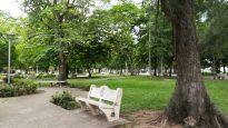 Natura rilassante a Camaguey