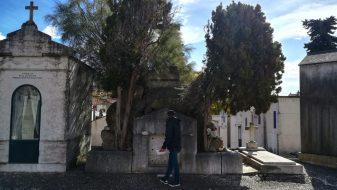 Massi e Monumenti, Cimitero Dos Prazeres di Lisbona