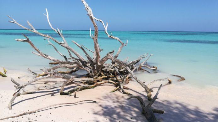 Acqua che tolgono il Fiato, il meglio e il peggio di Cuba