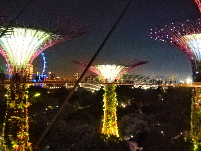 Gardens-by-the-bay-Singapore-in-36-ore
