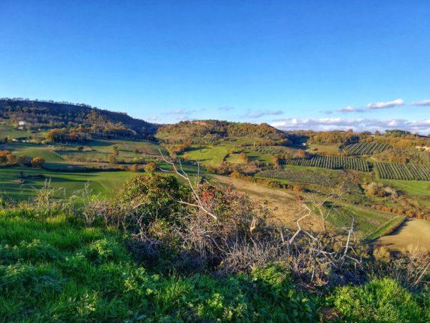 Panorama_celleno