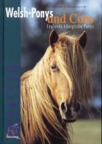 Englands königliche Ponys
