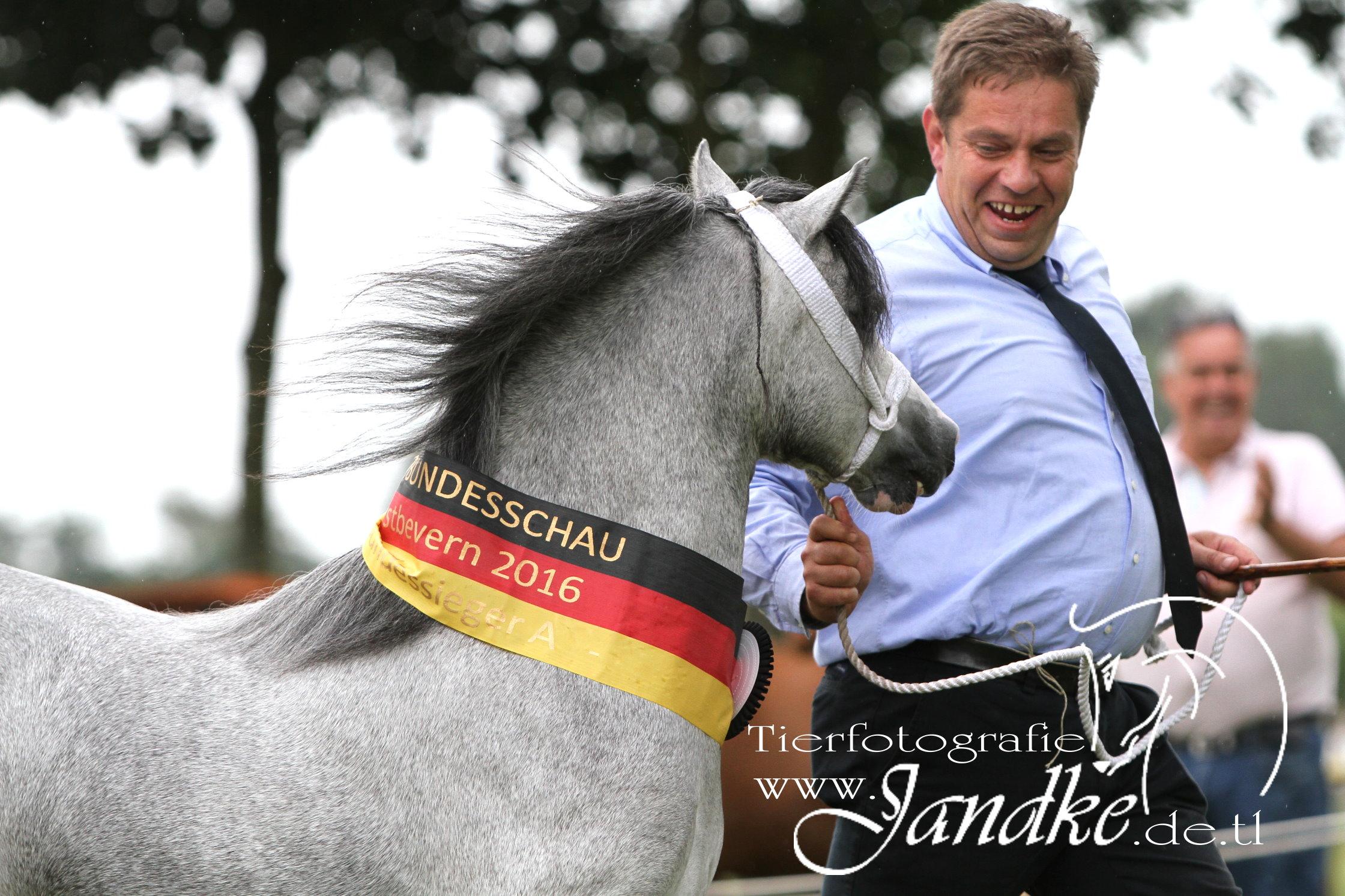 Foto Tierfotografie Jandke (49)
