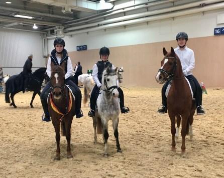 IG Welsh Pferd & Jagd 2016 (5)