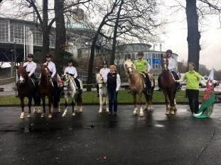 IG Welsh Pferd & Jagd 2016 (6)