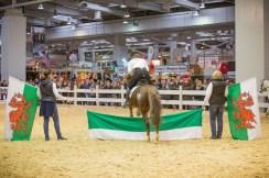 IG Welsh Pferd & Jagd 2016 (9)