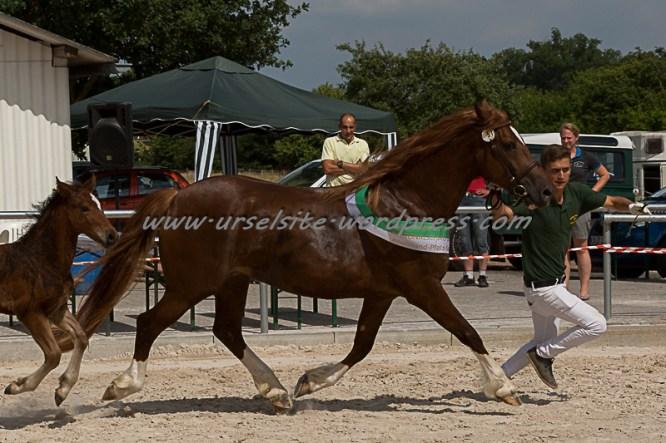 RS_Pfalz-3611
