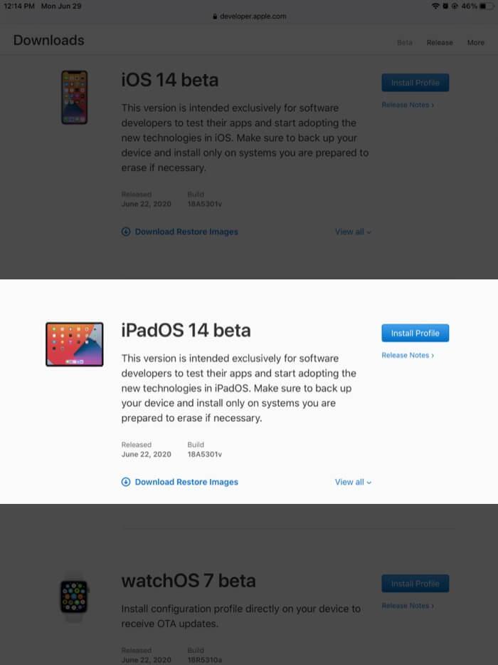 Tippen Sie im Entwicklerkonto auf dem iPad auf Installationsprofil neben ipados 14 beta