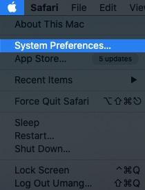 нажмите на логотип Apple и выберите системные настройки на Mac
