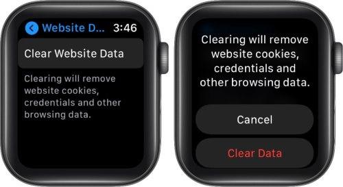 очистить данные веб-сайта на Apple Watch