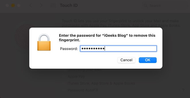 Введите пароль Mac и нажмите OK.