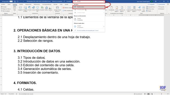 Insertar iconos en Word - igf.es