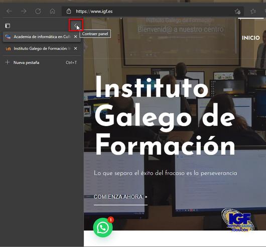 Contraer panel pestañas verticales - igf.es