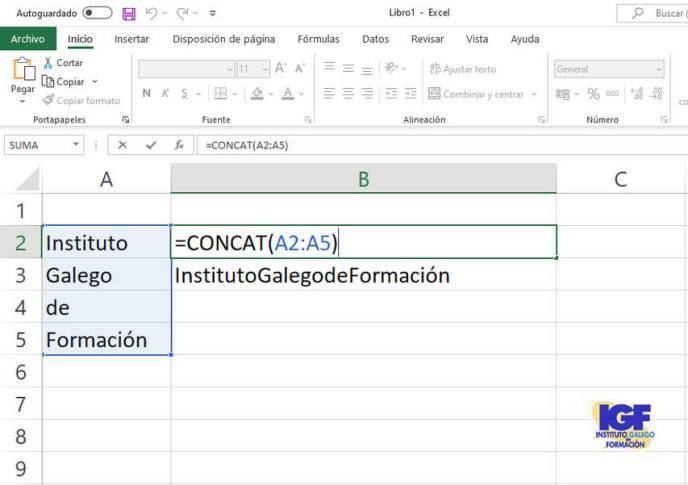 Función concat de Excel 2019 con rango - igf.es.jpg