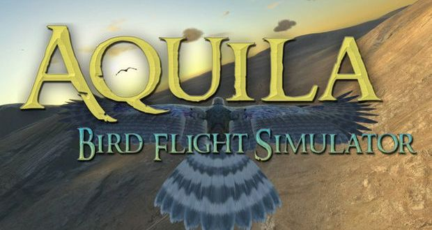Aquila Bird Flight Simulator Free Download