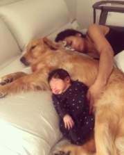 Cute-Pictures-Dogs-Napping-Kids-Babies-21