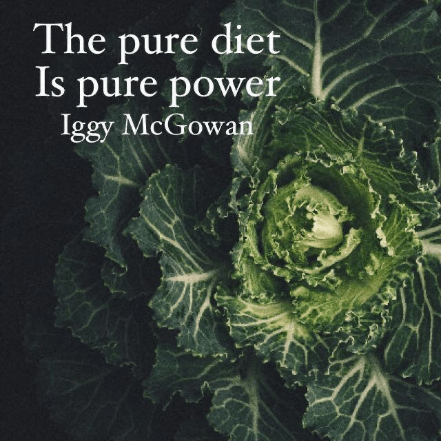 The Pure Diet Is Pure Power
