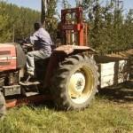 Paritaria UATRE 2017: Aumento del 22% para peones rurales