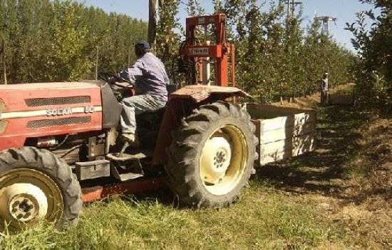 Trabajadores Agrarios: Podrían acordar un bono de fin de año