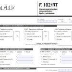 F102/rt 2021 AFIP