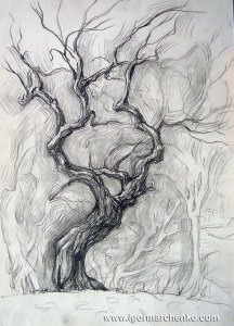 tree_charcoal_pencil