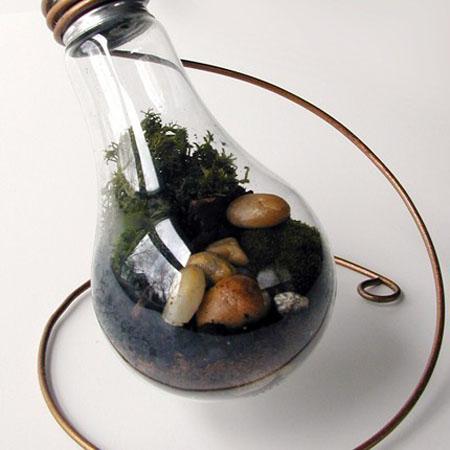 Terrarium From Recycled Light Bulbs Green Design Blog