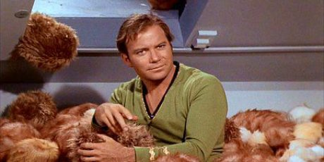 Ingredients Needed to Manage Network Tribbles