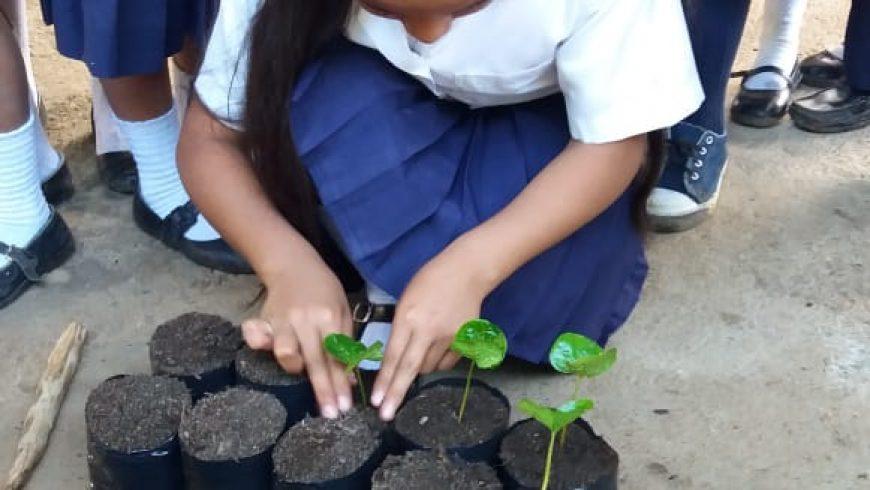Celebración del Día Mundial Contra el Trabajo Infantil