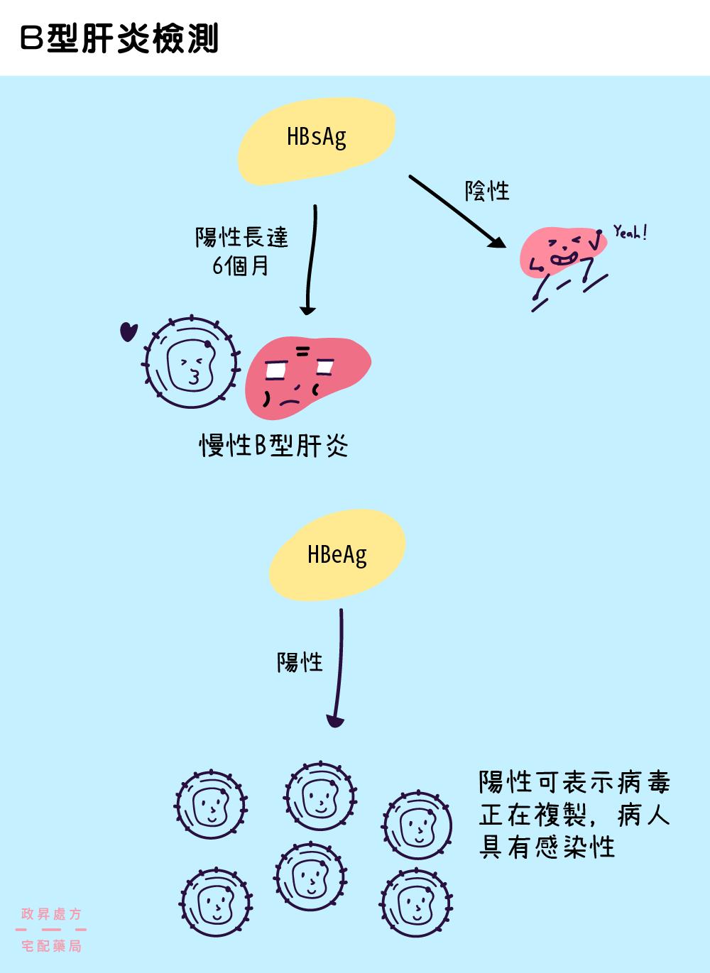 判別B型肝炎檢測結果的流程