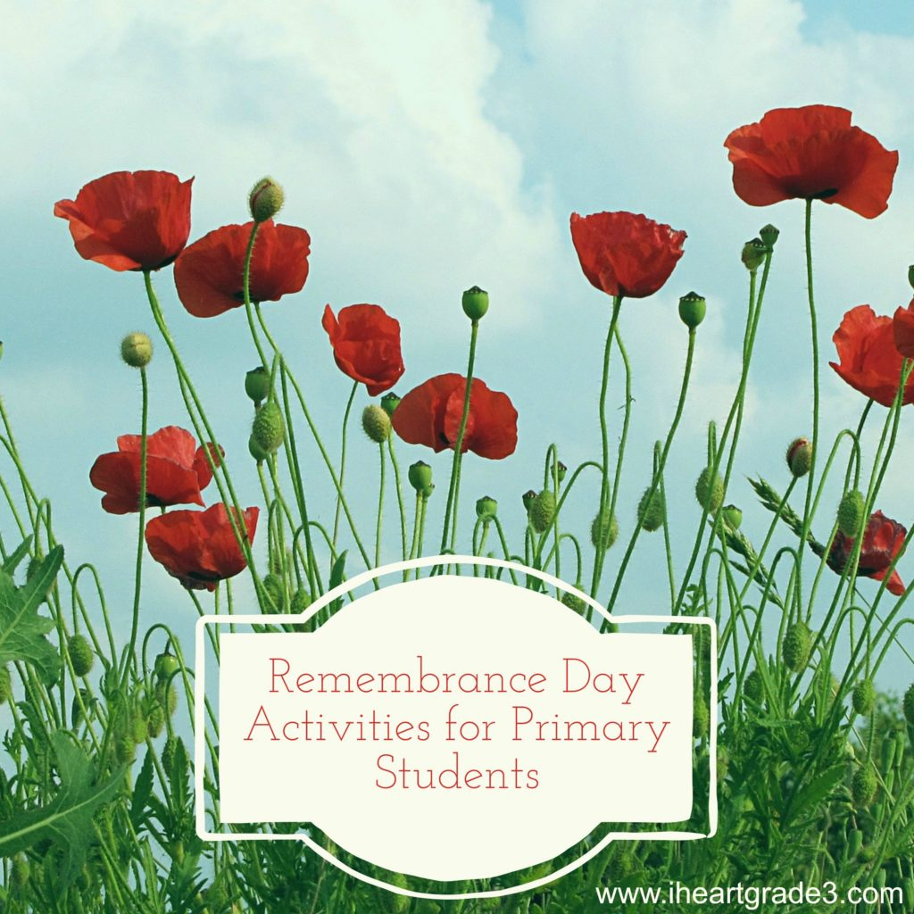 Remembrance Day Activities For Your Classroom