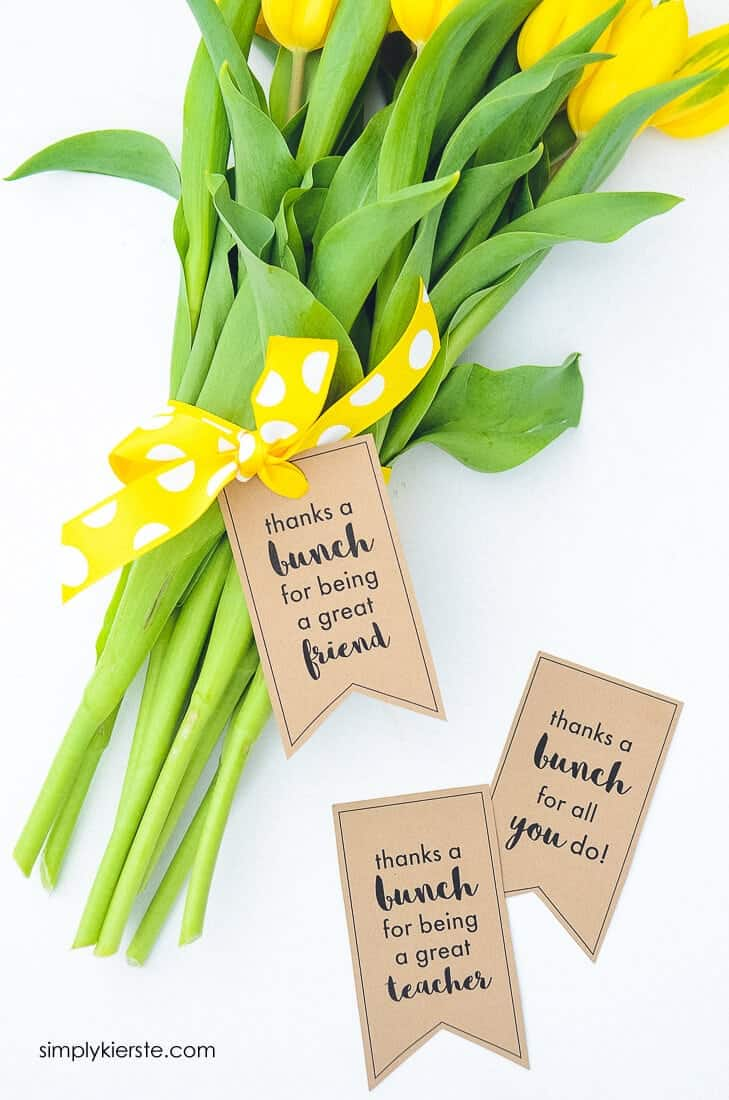 15 Easy and Cute DIY Teacher Appreciation Gift Ideas