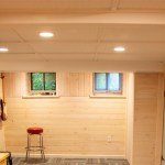 Other Basement Walls Ideas Magnificent On Other Pertaining To Wall Wowrulercom Avaz International 20 Basement Walls Ideas Amazing On Other And Awesome Painting Concrete Block Exterior Inspiration 21 Basement Walls Ideas Wonderful
