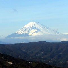 富士山大噴火 気象研「降灰量シミュレーション」の衝撃 日刊ゲンダイDIGITAL