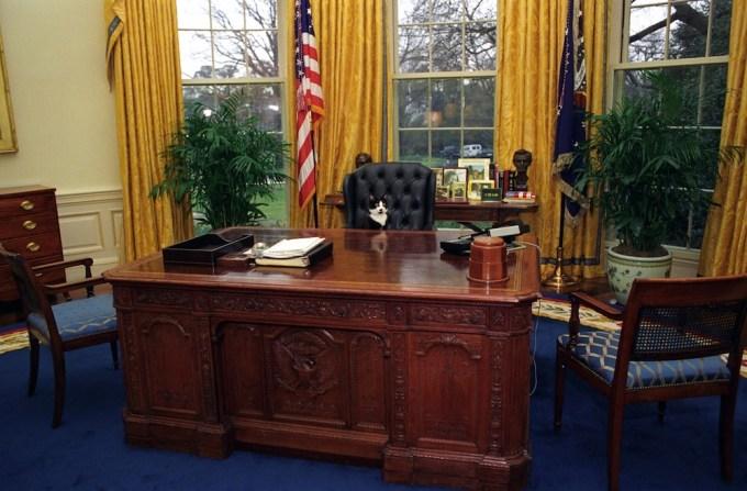 New Secretary Interior