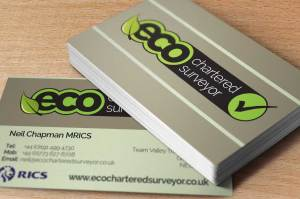 ECO Chartered Surveyor Logo and Brand Design