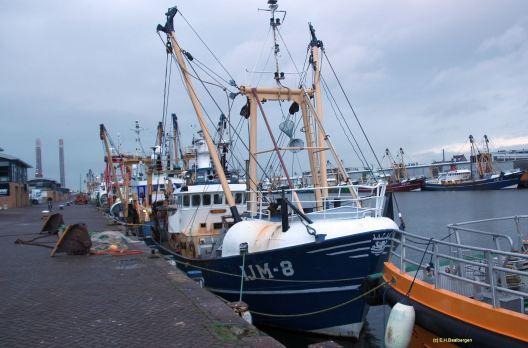 vissershaven ijmuiden