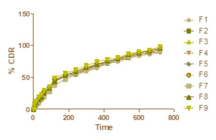 Figure 18: Zero order kinetic