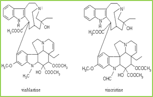 Figure 8: chemical structure of vinblastine and vincristine