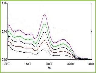Figure 1: The overlaid UV spectra of DM in phosphate buffer