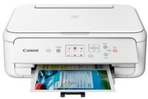 Canon PIXMA TS5151 Drivers Download